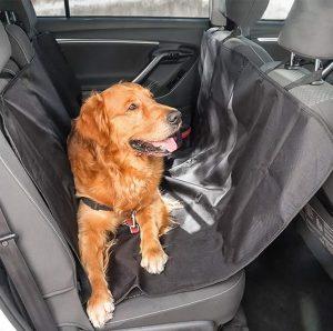 bilskydd för hund och katt i bil